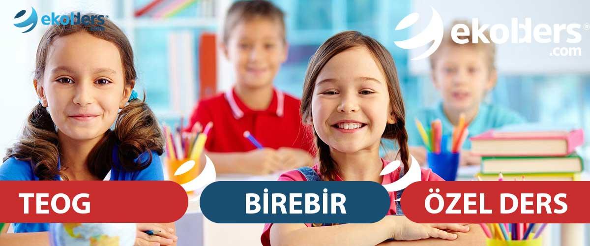 Teog özel ders, teog matematik özel ders, teog fen bilimleri özel ders, teog Türkçe özel ders, Teog İngilizce özel ders